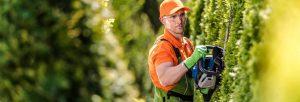 travaux dans votre jardin